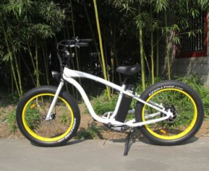500W Fat All Terrain Electric Bike with 4.0 Inch Wide Tire pictures & photos