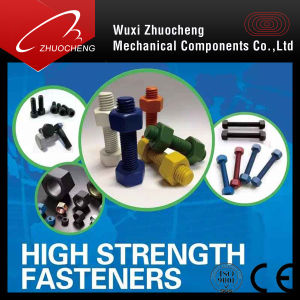 High Strenght Bolt pictures & photos