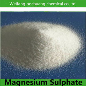 Manufacturer Supply Feed/Food Additive Magnesium Sulphate