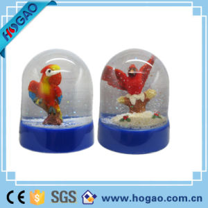 OEM Plastic Photo Snow Globe Cute Parrot Inside pictures & photos