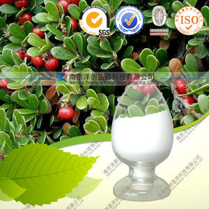 Factory Supply CAS: 497-76-7 Large Quantity Beta-Arbutin 98% with Best Price pictures & photos