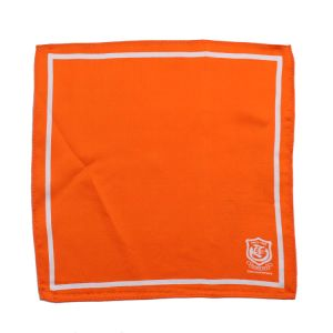 100% Silk Printed Scarf Custom Logo Orange Style Square Lady Gentlemen Scarf pictures & photos