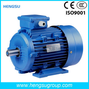 Ye2 Three Phase Electrical Motor of IP55 F B5 Frame 71-355 for Water Pump pictures & photos