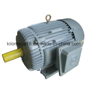 Y Series 3-Phase Electric Motors for Industry with Ce pictures & photos