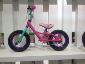 Toys 12 Inch Kids Bike with Assist Wheel (HC-CWC-15) pictures & photos