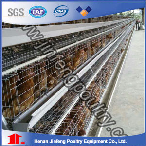 Uganda Poultry Farm Automatic Chicken Layer Cage for Sale pictures & photos
