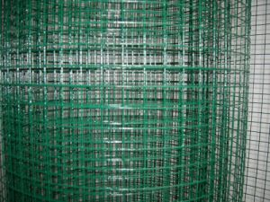 100*100mm PVC Coated Welded Wire Mesh Panel Anping Factory pictures & photos