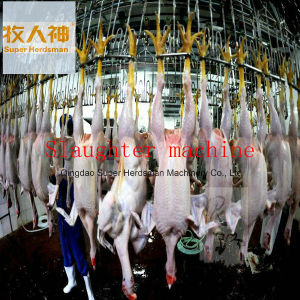 Meat Processing Machine in Poultry Farming House with Prefab House Design and Construction pictures & photos