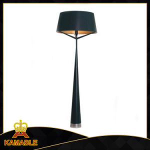 Modern Design Rest Room Floor Lamp (KAF6101) pictures & photos