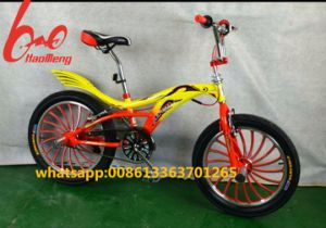 """Best Selling 20"""" Freestyle Bicycle /Freestyle Bike/Freestyle Bicycle Bike pictures & photos"""