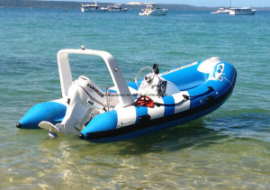 Aqualand 14feet Rigid Inflatable Rescue Boat/Rib Fishing Boat (RIB420B) pictures & photos
