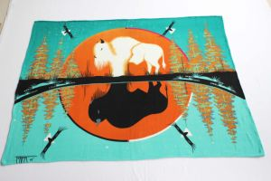 Printed Polyester Fleece Blanket/Native American Blankets pictures & photos