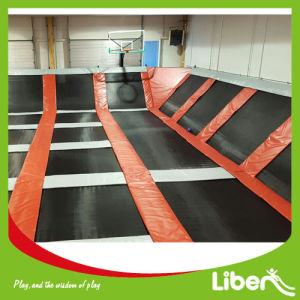 Indoor Trampoline Fitness Exercise Equipment/Gymnastic Trampoline pictures & photos