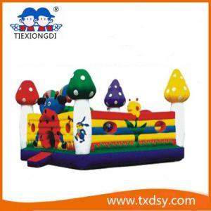 Bouncy Castle, Amusement Park Type Inflatable Castle Txd16-222288 pictures & photos