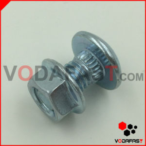 Customized Special Round Head Bolt with Flange Nut pictures & photos