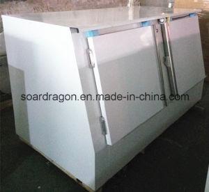 Outdoor Double Doors Ice Storage Bin pictures & photos