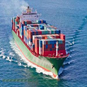 Ocean Shipping Logistics From Shenzhen to Punta Cuchillo Venezuela pictures & photos