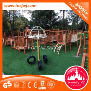Amusement Equipment Kids Wood Expansion Outdoor Playground Equipment pictures & photos