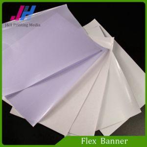 Banner Flex Digital Printing Flex Banner pictures & photos