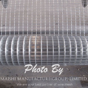 "1"" Galvanized Welded Wire Mesh pictures & photos"
