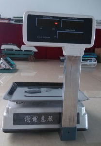 RS232 Platform Weighing Price Scale with Beautiful Appearance pictures & photos