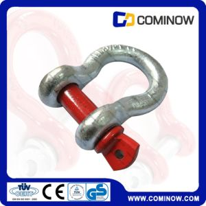 Forged Steel Screw Pin G209 Anchor Bow Shackle Galvanized pictures & photos