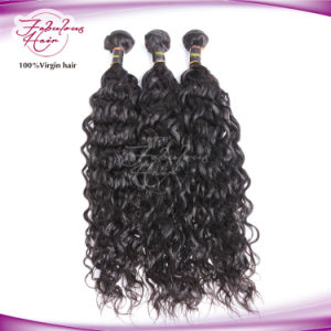 8A Unprocessed Remy 100% Hair Virgin Brazilian Natural Wave pictures & photos