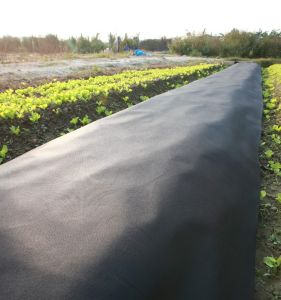 Black Color PP Spunbonded Nonwoven Landscape Fabric pictures & photos
