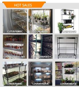 Wire Shelf for Mushroom Growing Rack pictures & photos