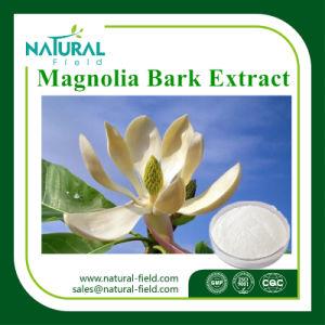 Best Selling Magnolia Bark Extract 98% Honokiol pictures & photos