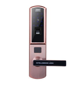 Waterproof Fingerprint Biometric Password Qr Code Door Lock pictures & photos
