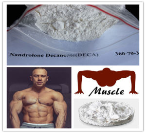 Pure Raw Material Micronised Winny Steroid Powder Winny pictures & photos