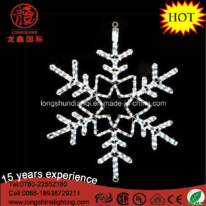 LED White Outdoor Silhouette IP65 Snowflake Christmas Light pictures & photos
