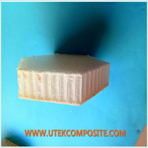 30mm Thickness PP Honeycomb Core for Van pictures & photos