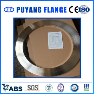 Stainless Steel Plate Flange (PY0019) pictures & photos