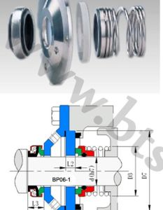 Apv Pump Seal (BP06) pictures & photos