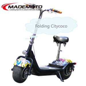 Citycoco Scrooser Warranty 2016 The Most Fashionable Citycoco 2 Wheel Adults Electric pictures & photos