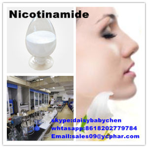 Skin Cells Actives Nicotinamide CAS No.: 98-92-0 pictures & photos