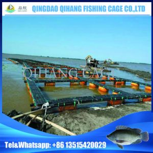 Floating Fishing Net Cage for Sturgeon Growth pictures & photos