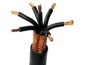 450/750V PVC/PVC Alloy Wire Braiding Screen Control Cable Kvvp pictures & photos