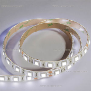 IP65 Blue SMD5050 LED Strip with High Quality pictures & photos
