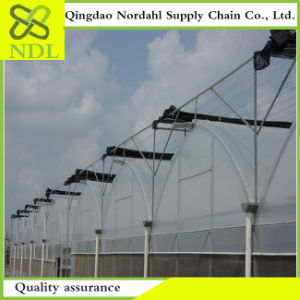 Plastic Film Greenhouse Factory Direct Selling pictures & photos