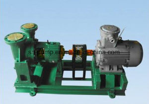 Y Types Hot Oil Pump pictures & photos