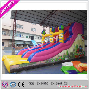 Popular Giant Inflatable Dry Slide with Low Price pictures & photos