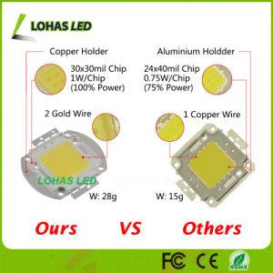 3V-12V 30-34V High Power 10W 20W 30W 50W 100W Warm White Cold White RGB LED COB Chip pictures & photos