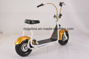 2017 Popular 1000W/ 1200W Two Wheel Stand up Electric Bike Citycoco Scooter pictures & photos
