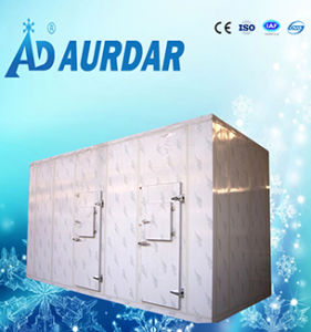 2017 Cooling Room/ Cold Storage Room for Keeping Fresh Food with The Best Price pictures & photos