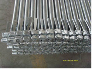 Scaffolding Manufacturer Steel Galvanized Ringlock pictures & photos
