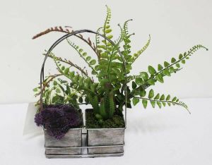 Artificial Plants and Flowers of Succulent Plant pictures & photos