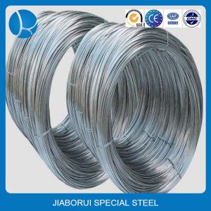 China Galvanzied Annealed Stainless Steel Wires Rope pictures & photos